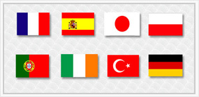 Multi - Lingual Web Sites